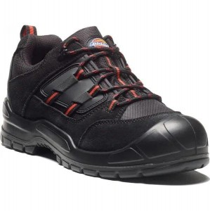 Buty Dickies EVERYDAY S1-P